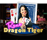 Live Dragon Tiger (Reno)