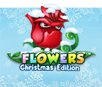 Flowers Christmas Edition