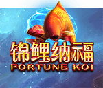 Fortune Koi Mobile