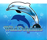 Wild Dolphins Mobile