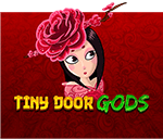 Tiny Door Gods
