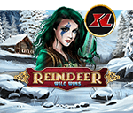 Reindeer Wild Wins XL