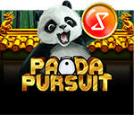 Panda Pursuit