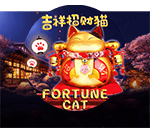 The Fortune Cat Mobile