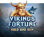 Vikings Fortune: Hold and Win Mobile