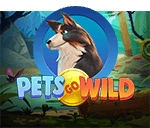 Pets Gone Wild Mobile